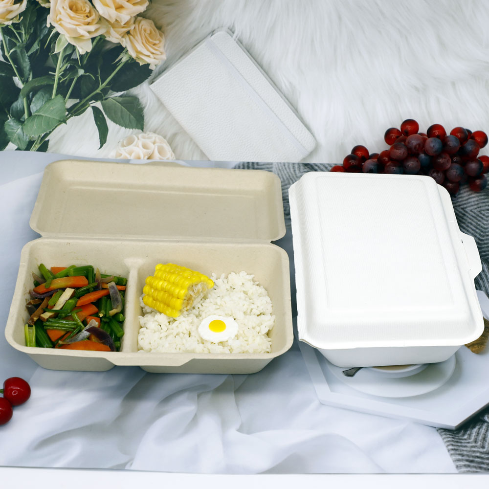 Sugarcanefood container (2)