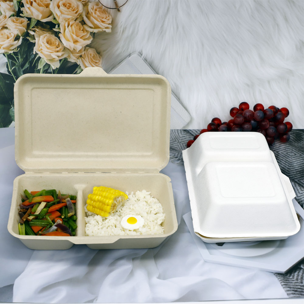 Sugarcanefood container (3)