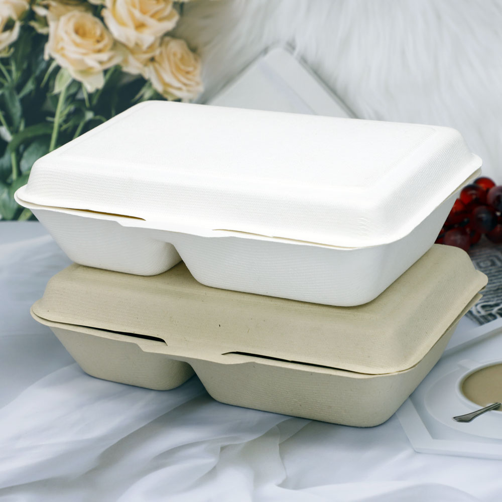 Sugarcanefood container (4)